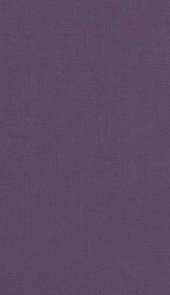 Klasyczny materiał rolety wewnętrznej NC1-E022