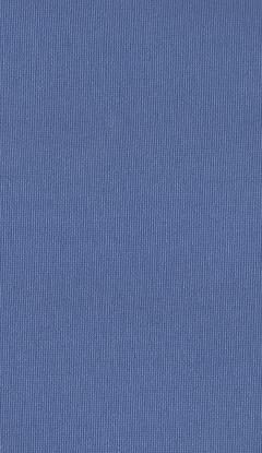 Klasyczny materiał rolety wewnętrznej NC1-A613