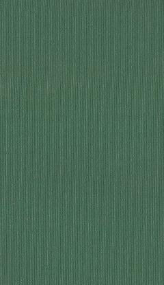 Klasyczny materiał rolety wewnętrznej NC1-E024