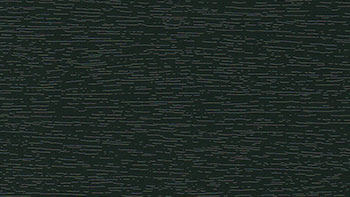 Ciemnozielony - kolor okleiny bramy segmentowej