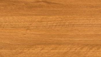 Winchster - kolor okleiny bramy segmentowej