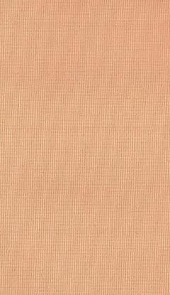 Klassische Stofffarben Innenrollos NC1-A617