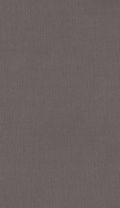 Klassische Stofffarben Innenrollos NC1-E019