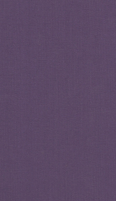 Klassische Stofffarben Innenrollos NC1-E022
