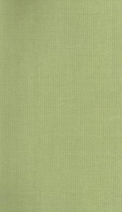 Klassische Stofffarben Innenrollos NC1-E023