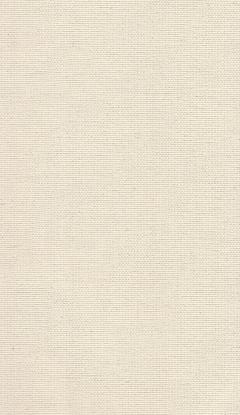 Klassische Stofffarben Innenrollos NC2-C202