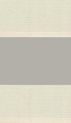 Tag und Nacht Stofffarben Innenrollos NZ3-DN801